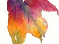 Autumn leaf 7