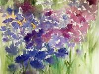 Cornflower Meadow
