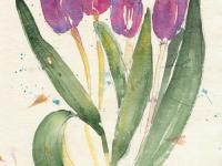Early_Spring_Tulips
