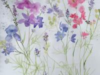 Larkspur and Lavender