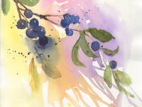Sloe Berries 2