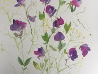 Sweetpeas and Fennel