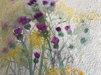 Thistles and Daisies