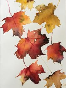 Red/yellow/gold leaves falling down the page