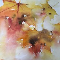 Yellows, oranges and reds in flling Autumn leaves