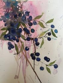 A pink glow surrounds these blue/purple sloes