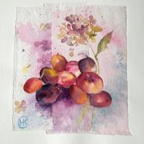Plums and nectarines collaged onto a pink/pale blue background with a painted pi