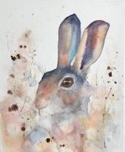 Brown hare crouching amongst dandelion heads in a meadow