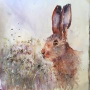 Brown hare in a field of  seed heads i