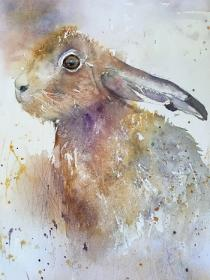 Blue grey/mauve hare looking out from a misty field