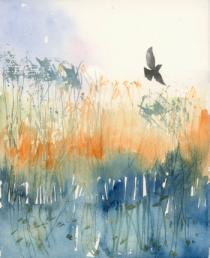 Bird flying across orange reeds and blue water