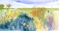 Blue water/ Wicken Fen with orange/gold reeds, bird and distant trees