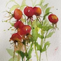 Orange red rose hips tumbling together on their stems with foliage