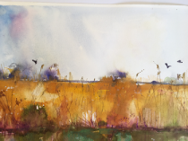 Yellow ochre reedbeds with birds and light blue sky