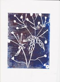 Silhouetted white seed heads against a blue black background