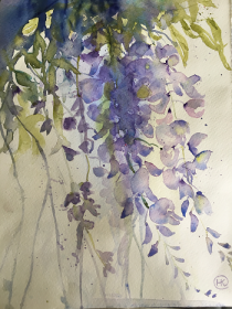 Purple wisteria blooms in a mass of trailing petals