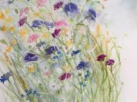 Cornflowers in the Hedgerow