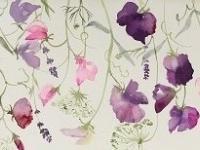 Sweetpeas, Ammi and Lavender