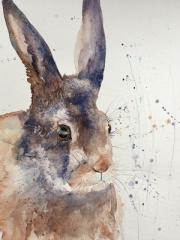 Large brown hare against a white background with suggestion of grasses