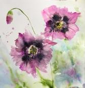 Two mauve poppies in full bloom with a bud againstagreen/blue background