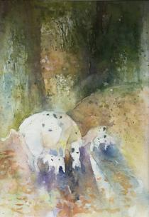 Mother pig and piglets amongst the forest trees