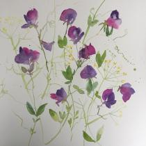 Purple pink sweetpeas with a background of yellow/green fennel